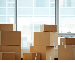 Unlimited Free Packing Boxes